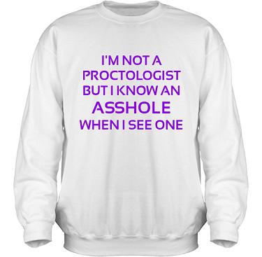 Sweatshirt HeavyBlend Vit/Violett tryck i kategori Attityd: Proctologist